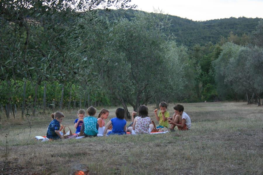 cena-vigna-2